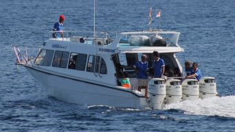 """Mola-Mola Express"" from Sanur to Nusa Penida at 8:30 and 16:30"