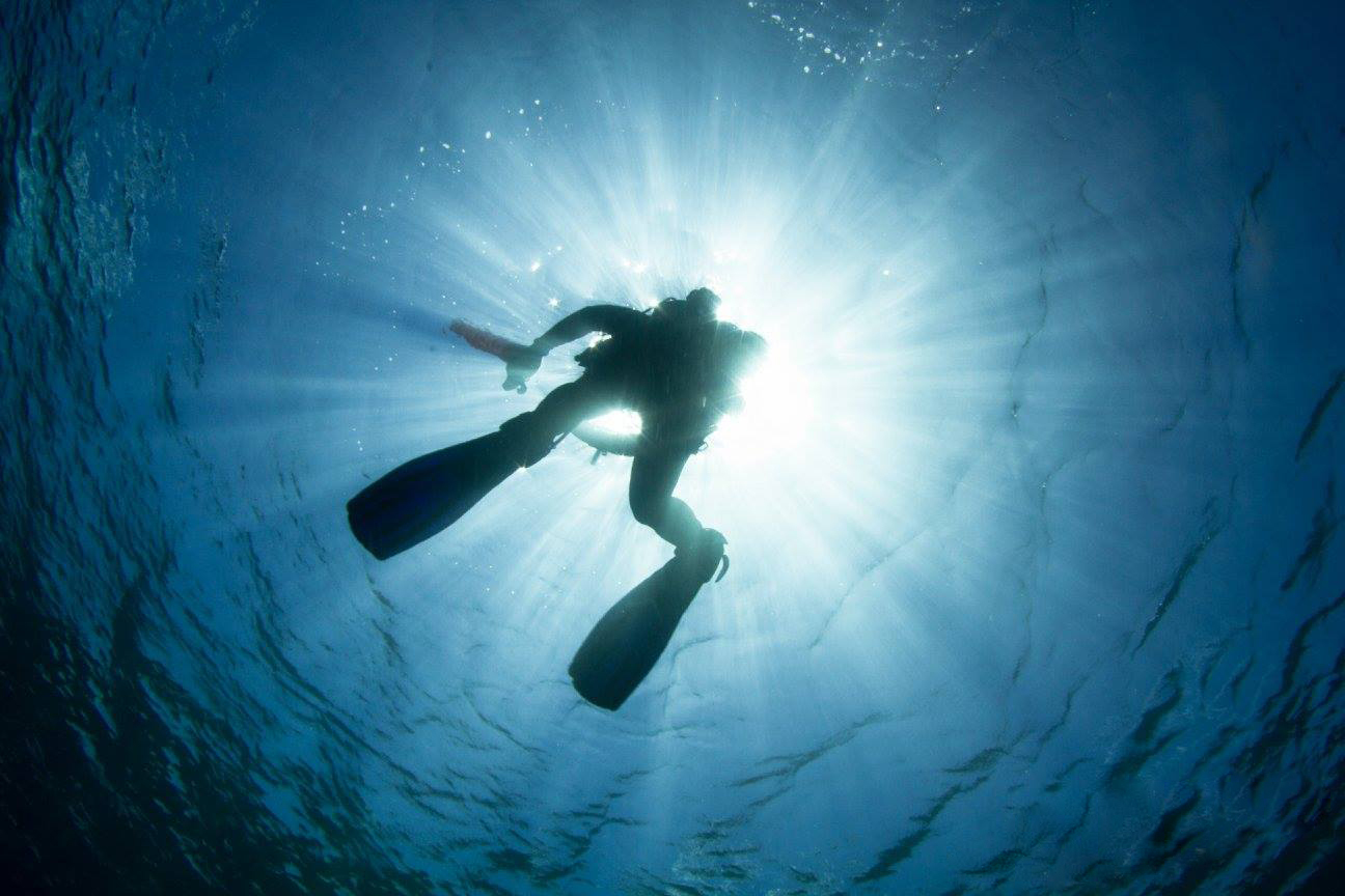 Get your PADI Courses & Advanced